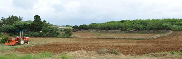 保良の風景|宮古島の民宿 あがりの宿さんさーら