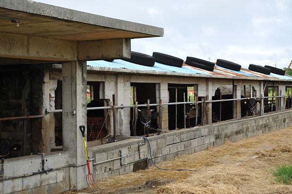 牛小屋|宮古島の民宿 あがりの宿さんさーら